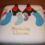 Robin Christmas Cake